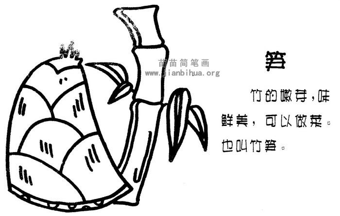 竹笋简笔画