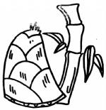 竹笋简笔画图片与知识