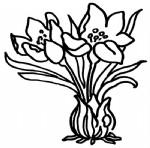 水仙花简笔画图片与资料
