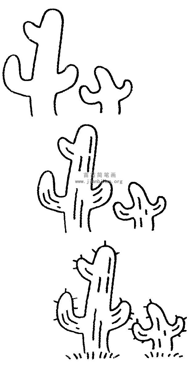 仙人掌简笔画