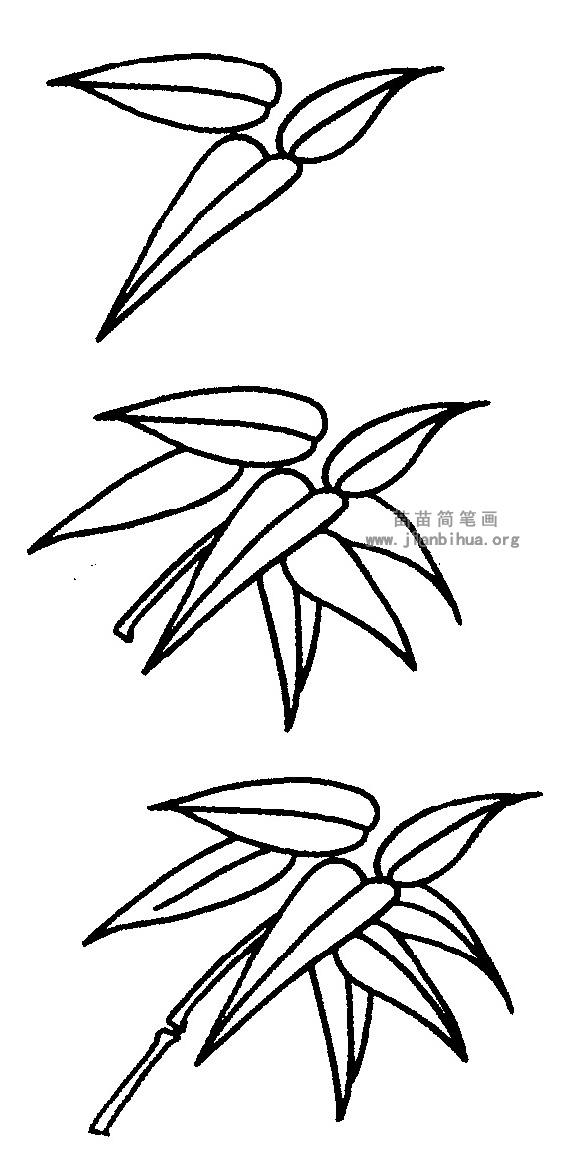 竹叶简笔画