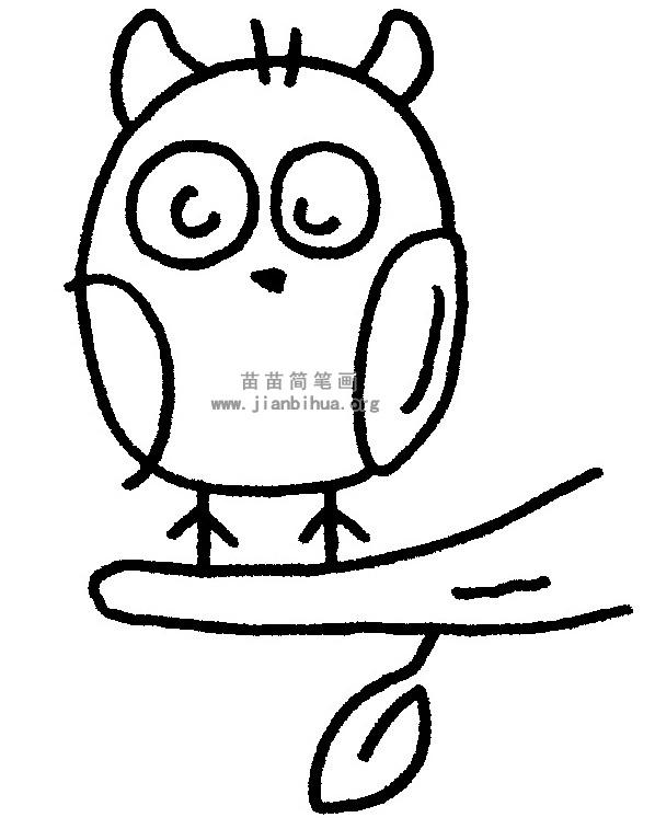 猫头鹰简笔画 儿歌与知识