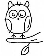 猫头鹰简笔画、儿歌与知识