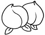 桃子简笔画、儿歌与知识
