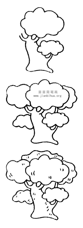 槐树简笔画 儿歌与知识