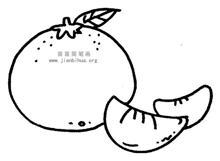 橘子简笔画图片