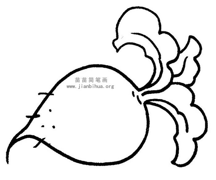 萝卜简笔画