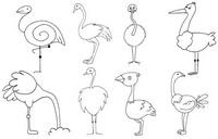 鸵鸟怎么画简笔画图解