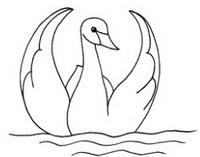 天鹅怎么画简笔画图解