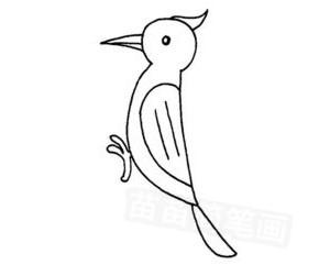 4.画爪子和尾巴