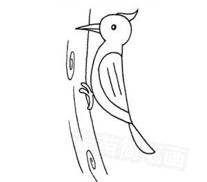 啄木鸟怎么画简笔画图解