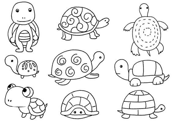 乌龟怎么画简笔画图解