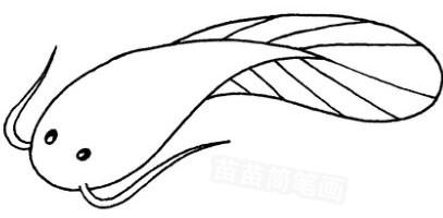 千奇百怪的动物_深海鱼怎么画简笔画图解