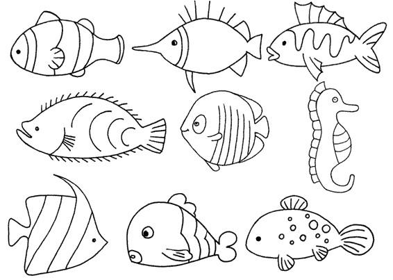 深海鱼怎么画简笔画图解