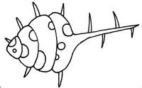 贝壳怎么画简笔画图解