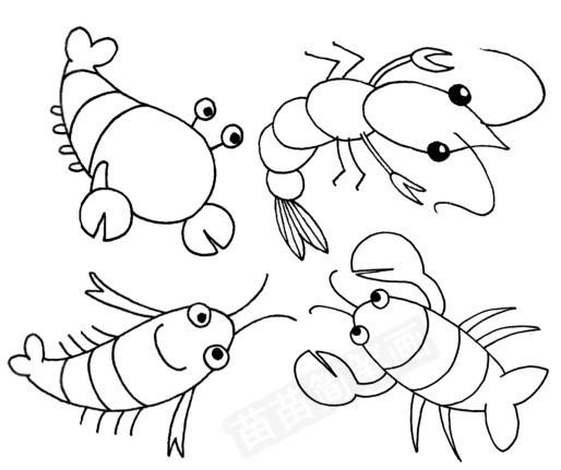 虾怎么画简笔画图解