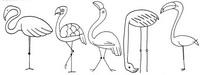 火烈鸟怎么画简笔画图解