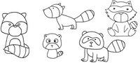 浣熊怎么画简笔画图解