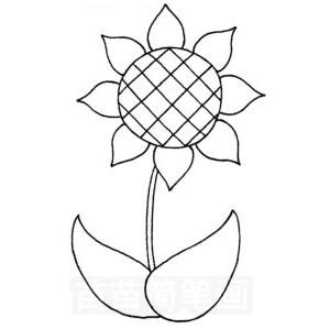 向日葵怎么画简笔画图解