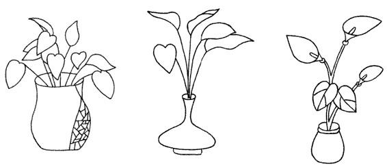 绿萝怎么画简笔画图解