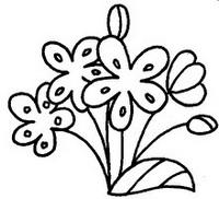 海棠怎么画简笔画图解