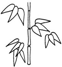 竹怎么画简笔画图解
