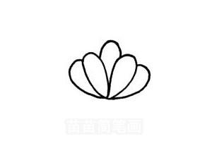 紫荆花的简笔画大全_多肉植物怎么画简笔画图解