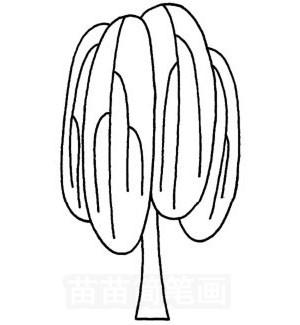 柳树怎么画简笔画图解