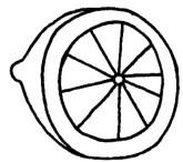 柠檬怎么画简笔画图解