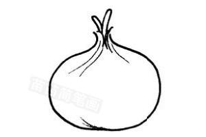 洋葱怎么画简笔画图解