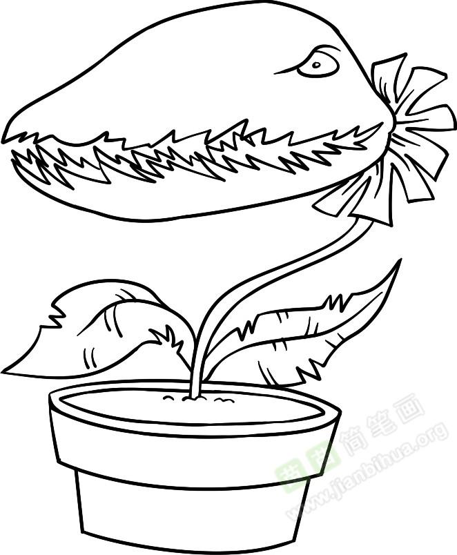 食人草简笔画图片