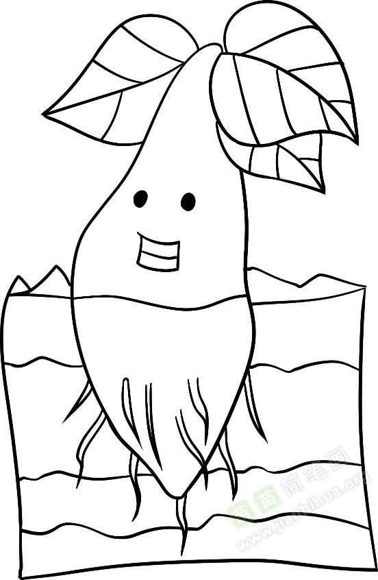 小树简笔画图片教程