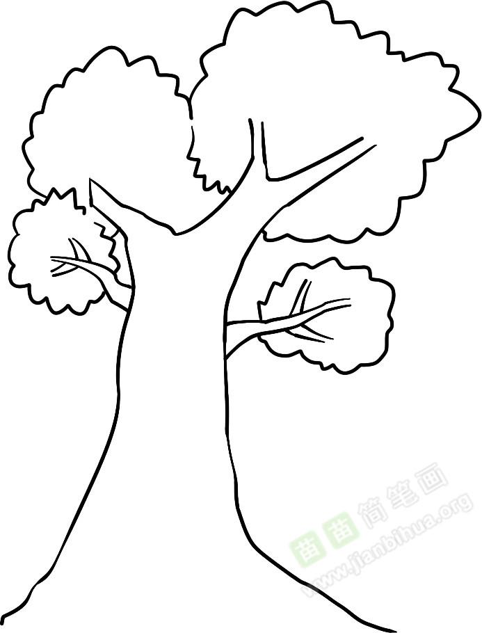 茂盛的树简笔画图片教程