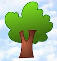 树的简笔画_树怎么画简笔画视频教程