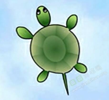 乌龟简笔画 乌龟怎么画简笔画视频教程