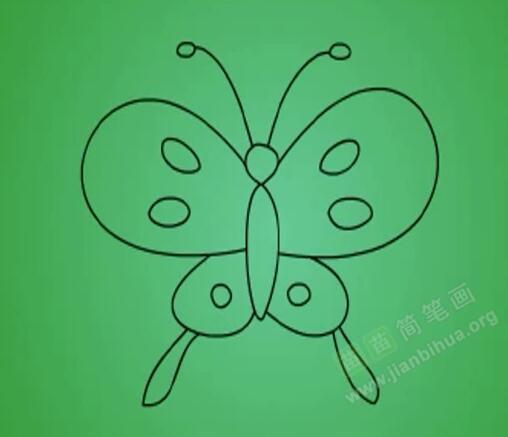 画蝴蝶简笔画口诀: 一只毛毛虫,长出俩触角,展开花翅膀,丝带随风飘。 蝴蝶的小知识: 有些蝶类的幼虫常有缀叶为巢而隐居其中的习性,缀叶的方法因虫种各有不同,有缀一叶的,有缀数叶的,各有各的式样或技巧。香蕉弄蝶幼虫能将香蕉叶的边缘褶黏成巢而隐居其中,稻弄蝶则常缀联数叶而巢居其中。有巢居习性或结网群栖习性的幼虫,它们都在栖息处的近旁取食,绝不远出,一有惊动,立即退入巢内躲藏,这与一般蝶类的栖息习性完全不同。 水是生物有机体在新陈代谢作用中必不可少的一种成分。因此我们常常能看到蝴蝶停在潮湿的地上吸水,尤其是稍含