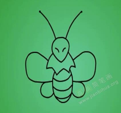 蜜蜂简笔画 蜜蜂怎么画简笔画视频教程