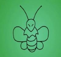 蜜蜂简笔画_蜜蜂怎么画简笔画视频教程