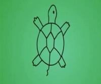 乌龟简笔画教程_乌龟怎么画视频教程