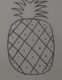 菠萝简笔画_菠萝怎么画简笔画视频教程