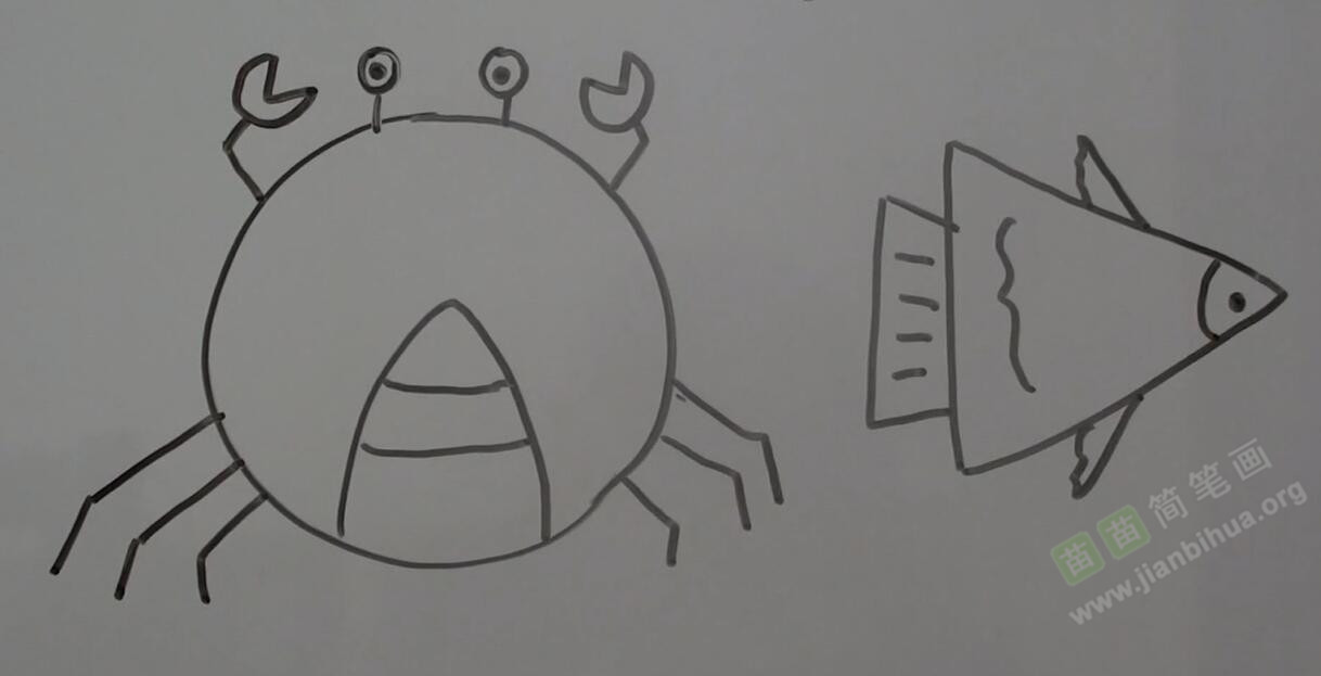 螃蟹和鱼简笔画视频简介: 我们利用圆形来画出一只螃蟹,首先要画出螃蟹的身体,然后画出螃蟹的两只钳,然后画出螃蟹的眼睛,再画出螃蟹的腹部,再画出螃蟹的腿,螃蟹画完了;然后我们再利用三角形来画一条鱼,首先用三角形画出鱼的身体,再画出鱼的尾部,然后再画出鱼鳞,鱼鳍,画出鱼的鳃部和眼睛,我们的鱼已经画完了。 螃蟹和鱼的小知识: 螃蟹:螃蟹富含蛋白质,有高胆固醇、高嘌呤,痛风患者食用时应自我节制,患有感冒、肝炎、心血管疾病的人不宜食蟹。中国有中秋前后食用河蟹的传统,由于传统上中医认为蟹性寒,故常用姜茸、紫苏等配置食