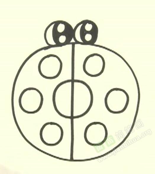 七星瓢虫简笔画 七星瓢虫怎么画简笔画视频教程