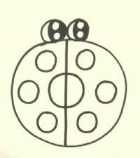 七星瓢虫简笔画_七星瓢虫怎么画简笔画视频教程