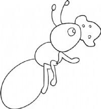 蚂蚁简笔画图片教程(一)