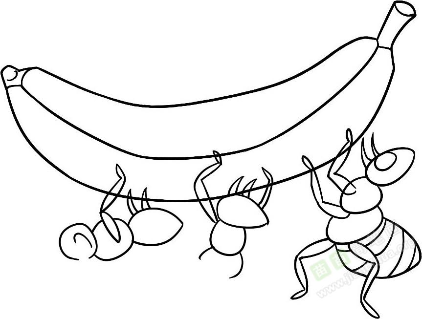 4. 一起抬起来 关于蚂蚁的知识: 蚂蚁绝对是建筑专家,蚁巢内有许多分室,这些分室各有用处。蚁窝牢固、安全、舒服,道路四通八达,错综复杂。蚁窝外面还有一圈土,还有一些储备食物的地方,里面通风、凉快、冬暖夏凉,食物不易坏掉。 蚂蚁也是动物世界赫赫有名的建筑师。它们利用颚部在地下挖洞,通过一粒一粒搬运沙土,建造它们的蚁穴。蚁穴的房间将一直保持建造之初的形态,除非土壤严重干化。蚂蚁研究专家沃尔特奇尔盖尔对蚁穴进行建模。他将液态金属、石腊或者正畸石膏灌入入侵红火蚁蚁穴,凝固定型之后挖出。 苗苗 简 笔画为您