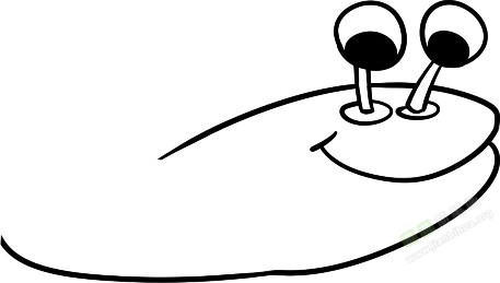 3. 弯身叉尾   苗 苗简 笔画 为 你提供 战斗虾简笔画图片教程   苗 苗简 笔画 为 你提供 战斗虾简笔画图片教程   1. 两个眼睛