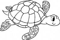 海龟简笔画图片教程