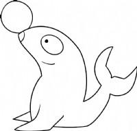 海豹简笔画图片教程(一)