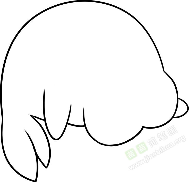 海狮简笔画图片教程