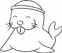 海狮简笔画图片教程(二)